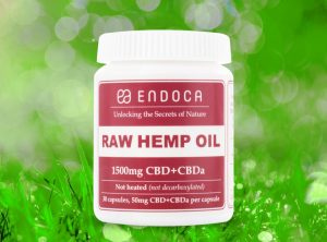 Endoca – Raw Hemp Oil Capsule | 30 stk  CBD Kapseln, 1500 mg CBD