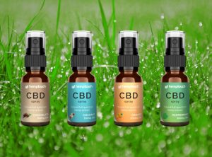 Hemptouch – CBD Spray | 10 ml <br> CBD Öl, 300 mg CBD