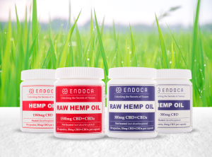 Endoca – (RAW) Hemp Oil Capsules | 30 Stück <br>CBD Kapseln