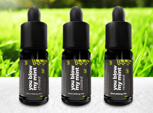 wrong? – you blow my mint | 10 ml <br>  CBD E-Liquid