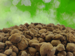 CannaFritz – Moonrocks 65%
